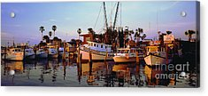 Acrylic Print featuring the photograph Daytona Sonny Boy And Miss Hazel by Tom Jelen