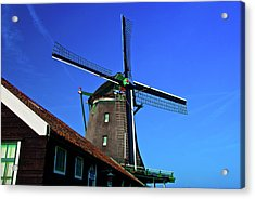 Acrylic Print featuring the photograph De Zoeker Blue Skies by Jonah  Anderson