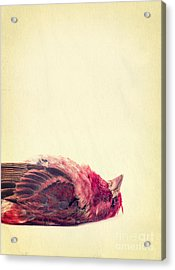 Dead Acrylic Print by Edward Fielding