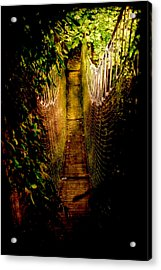 Deadly Path Acrylic Print by Loriental Photography