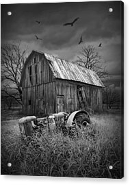 Death Of A Midwest Farm Acrylic Print by Randall Nyhof