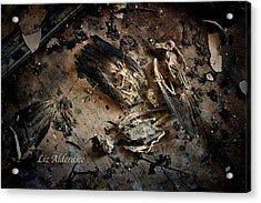 Acrylic Print featuring the photograph Deathly Hallows by Liz  Alderdice
