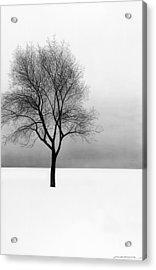 December 11 Acrylic Print by Doug Fluckiger