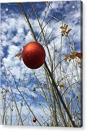 December Acrylic Print by Jean Marie Maggi