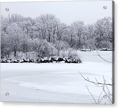 December Lake Acrylic Print by Debbie Hart