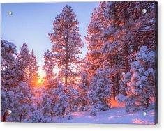 December Sunrise Acrylic Print by Darren  White