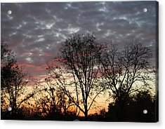 Acrylic Print featuring the photograph December Sunset by Ramona Whiteaker