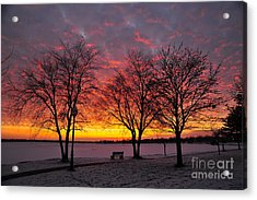 Acrylic Print featuring the photograph December Sunset by Terri Gostola