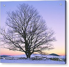 Acrylic Print featuring the photograph December Twilight by Alan L Graham