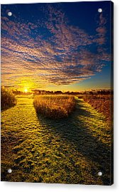 Decisions Acrylic Print by Phil Koch