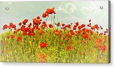 Decorative-art Field Of Red Poppies Acrylic Print by Melanie Viola