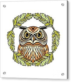 Decorative Illustration With An Owl Acrylic Print