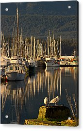 Deep Bay Acrylic Print by Randy Hall