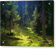 Deep Forest Acrylic Print by Lutz Baar