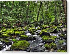 Deep Green River Acrylic Print