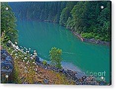 Deep Green River Near Ross Lake Washington In Forest Acrylic Print by Valerie Garner