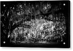 Deep In The Woods Acrylic Print by Christy Usilton