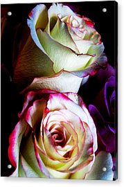 Deep Pink Acrylic Print by Will Boutin Photos