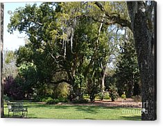 Acrylic Print featuring the photograph Deep South Scenery by Carol  Bradley