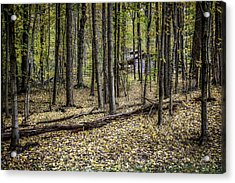 Deep Woods Cabin Acrylic Print by Tom Mc Nemar