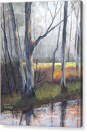 Deep Woods Acrylic Print by Frank Cochran