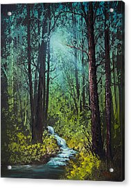 Deep Woods Stream Acrylic Print by C Steele