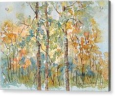 Deep Woods Waskesiu Acrylic Print