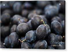 Deeply Damson Acrylic Print by Anne Gilbert