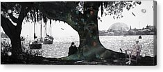 Deeply Rooted Acrylic Print by Betsy Knapp