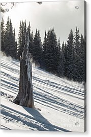 Deeply Weathered Acrylic Print