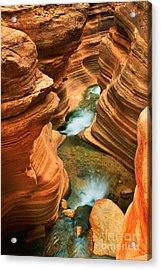 Deer Creek Slot Acrylic Print