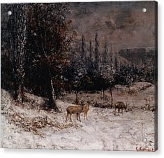 Deer In The Snow Acrylic Print by Gustave  Courbet