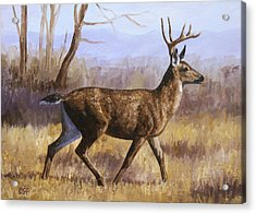 Deer Painting - Trotting Buck Acrylic Print