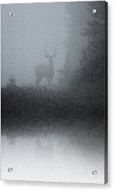 Acrylic Print featuring the photograph Deer Reflecting by Diane Alexander