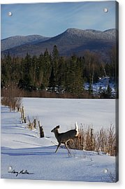 Deer Run Acrylic Print