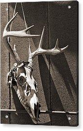 Deer Skull In Sepia Acrylic Print by Brooke T Ryan