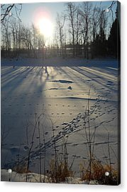 Deer Tracks On The River Acrylic Print