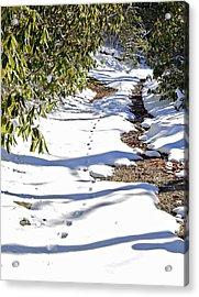 Deer Trail Acrylic Print by Susan Leggett