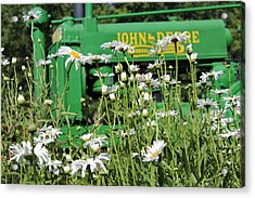 Acrylic Print featuring the photograph Deere 1 by Lynn Sprowl
