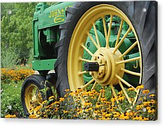 Acrylic Print featuring the photograph Deere 2 by Lynn Sprowl