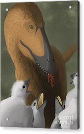 Deinonychus Dinosaur Feeding Its Young Acrylic Print by Michele Dessi