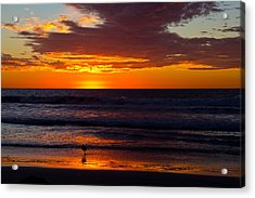 Del Mar Sunset Acrylic Print by Randy Bayne