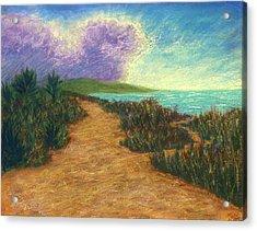 Del Mar Trails 02 Acrylic Print