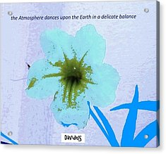 Delicate Balance Acrylic Print