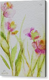 Delicate Blossoms Acrylic Print