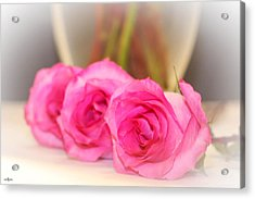 Delicate In Pink  Acrylic Print