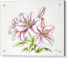 Delicate Lilies Acrylic Print