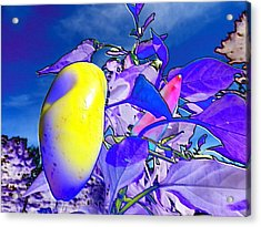 Acrylic Print featuring the digital art Delight by Mike Breau