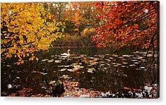 Delightful Autumn Acrylic Print by Lourry Legarde
