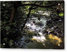 Dell Acrylic Print